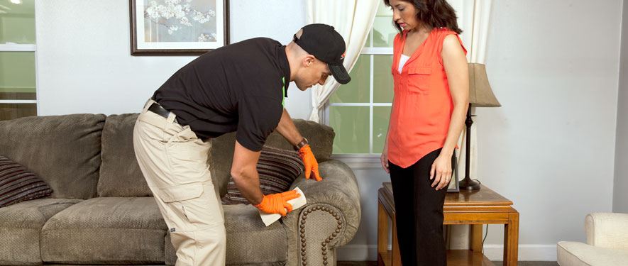 Norwalk, CT carpet upholstery cleaning